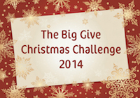 Big-Give-2014-Poster-copy1